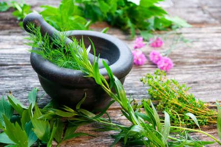herbs de provence: Fresh Herbs