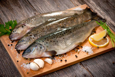 catch of fish: Raw fish  brown trout    Stock Photo