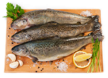 brown trout: Raw fish  brown trout    Stock Photo