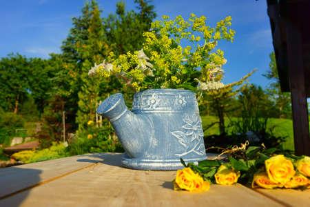 koy: Beautiful garden