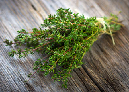 Bunch of fresh picked thyme Stockfoto