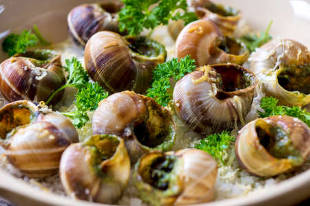 caracol: Bourguignonne caracol gratinado