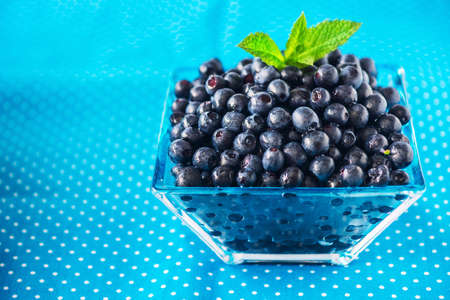 horticultural: Bowl of  fresh picked blueberries