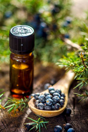 Juniper berries and essential oil  Stock Photo