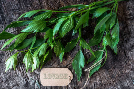 Fresh lovage on wooden background