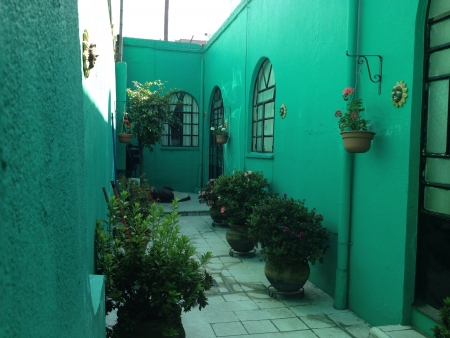 Foto tomada en la colonia Condesa en la Ciudad de Mxico Imagens - 20682603