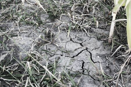 arid land cracked by drought, lack of precipitation and rain