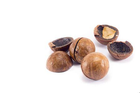 macadamia nuts close-up, macro, isolated on white background