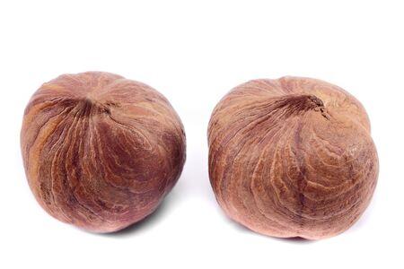 hazelnut isolated on white background close-up macro Reklamní fotografie