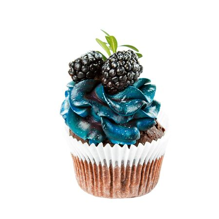beautiful appetizing cupcake with blue cream and blueberries and blackberries, cakes handmade desserts, close-up isolated on a white background