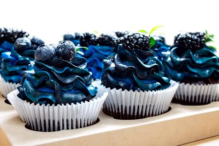 a set of beautiful mouth-watering cupcakes with blue cream and blueberries and blackberries, cakes handmade desserts, close-up, isolated