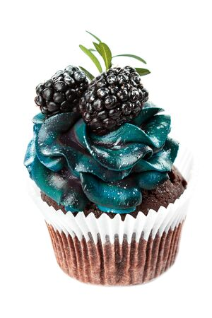 beautiful appetizing cupcake with blue cream and blueberries and blackberries, cakes handmade desserts, close-up isolated on a white background Stockfoto