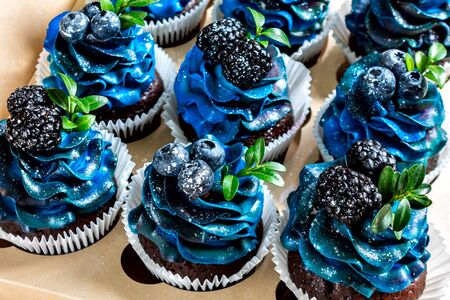 a set of beautiful mouth-watering cupcakes with blue cream and blueberries and blackberries, cakes handmade desserts, close-up top view