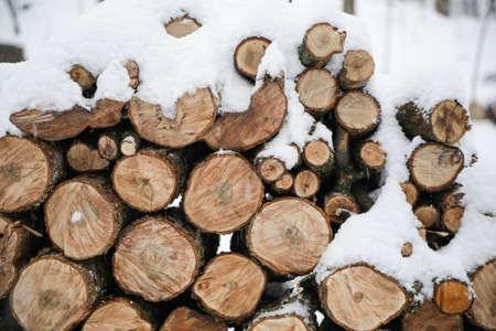 sawed: pile of sawed wood