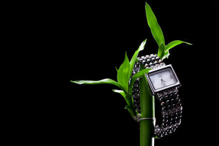 パールから女性腕時計黒 写真素材