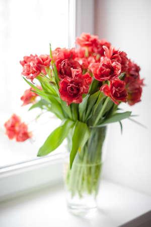 ウィンドウのガラス花瓶の赤いチューリップの花束