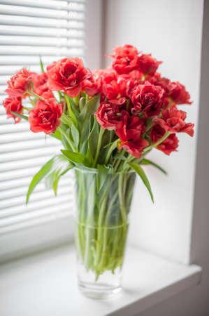 ブラインド ガラス花瓶とウィンドウの上の赤いチューリップの花束 写真素材