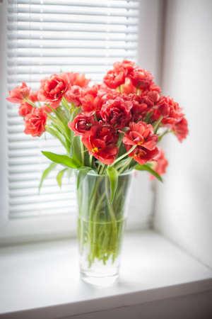 ブラインドのある窓の上にガラス花瓶の赤いチューリップの花束 写真素材