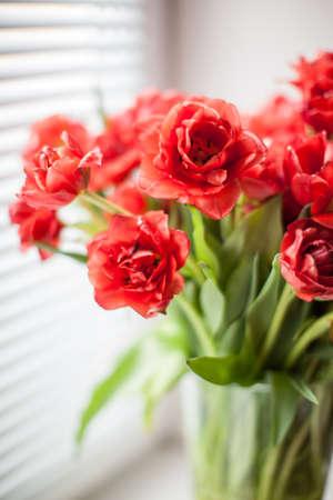 マクロの赤いチューリップの花束