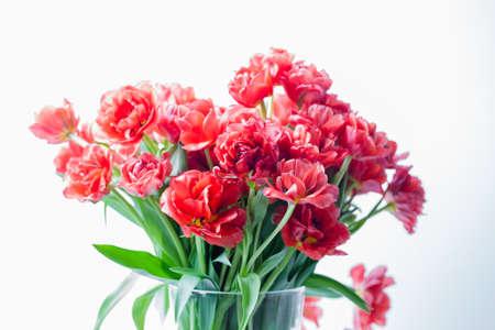 赤いチューリップの花瓶のクローズ アップ