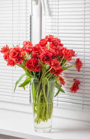 窓辺にガラス花瓶の赤いチューリップ
