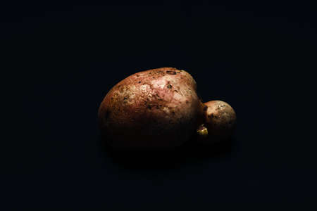 Flying space potato floating in cosmic weightlessness (Potato is on the black background). Stock Photo
