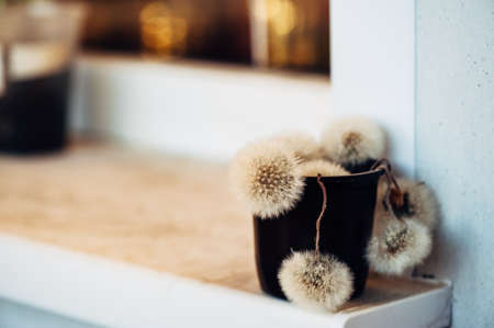 White fluffy dandelions collected in a black pot stand on the windowsill. Concept. Design.