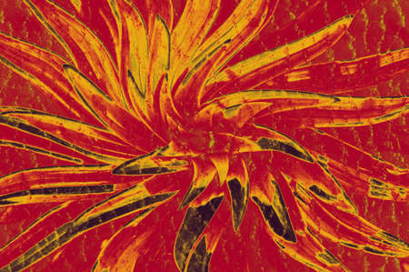 Crazy hallucinogenic whirlpool. Abstraction, a flower of red color.