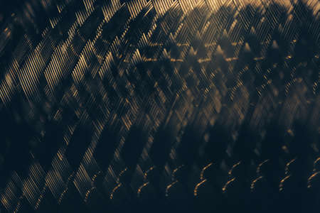 Reflected metal braided surface. Steel texture. Template. Stock Photo