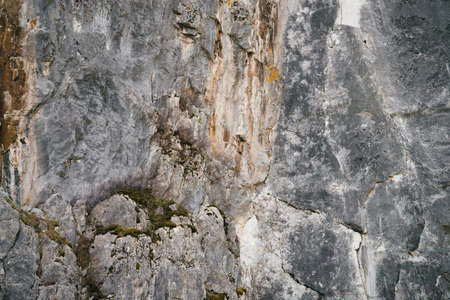 Beautiful rocky gray textured background with mosses and lichens. Surface mountain cliff close-up. Stock Photo