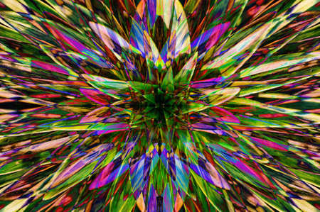 Hallucinogen fluorescent background from plants of surreal colors . Abstract illusion on drink and drug theme. Psychedelic tropical effect of cannabis or alcohol. Lsd effect. Hemp dope.