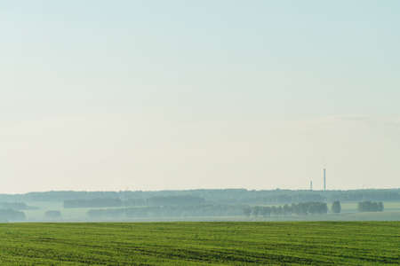 Misty fragment of plowed field in springtime. Rich green background of field with furrows from plough under blue sky with copy space. Tree in haze and industrial pipes with smog on horizon.