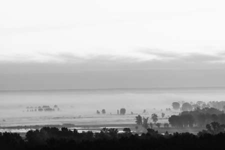 Mystic view on forest under haze at early morning in grayscale. Mist among tree silhouettes near water under predawn sky. Monochrome calm morning atmospheric minimalistic landscape of majestic nature. 版權商用圖片