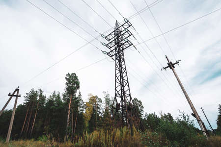 High voltage power lines among trees under cloudy sky. Electricity distribution tower in forest with copy space. Minimalist view from below on poles with wires at overcast weather.