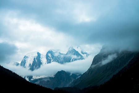 Low cloud before huge glacier. Giant snowy rocky mountains under cloudy sky. Thick fog in mountains above forest at early morning. Impenetrable fog. Dark atmospheric landscape. Tranquil atmosphere. Stock Photo