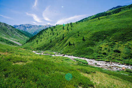 Mountain creek in green valley among rich vegetation of highland in sunny day. Fast water flow from glacier under blue clear sky. Giant snowy mountains behind hill. Vivid landscape of majestic nature.