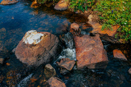 Smooth stones in spring water near rich mountain flora closeup. Clean water flow among red and orange stones. Natural background of spring stream, beautiful vegetation. Wet stones in creek. Copy space 免版税图像