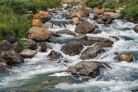 Big boulders in mountain creek close-up. Rapids of river with copy space. Fast water stream along beautiful vegetation. Fast flow near wet stones. Background of clean waves. Rich flora of highlands.