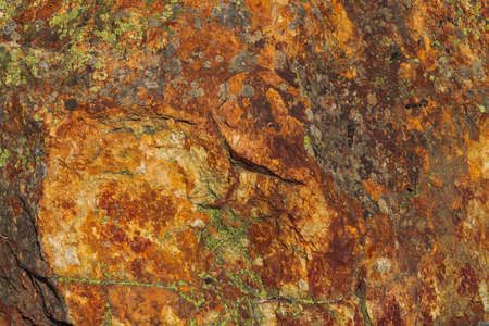 Plane of multicolored boulder. Beautiful rock surface close up. Colorful textured stone. Amazing detailed background of highlands boulder with mosses and lichens. Natural texture of mountain stone. Imagens
