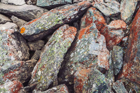 Multicolored boulder stream. Loose rock close up. Water under randomly scattered stones. Amazing detailed background of highlands boulders with mosses and lichens. Natural texture of mountain terrain.
