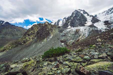 Snowy giant mountain range under cloudy blue sky. Rocky ridge with snow. Huge glacier. Icy mountainside with water streams. Rich vegetation of highlands. Atmospheric minimalist landscape of nature. Standard-Bild - 124054115