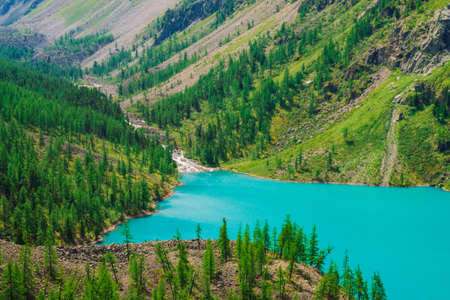 Fast mountain creek flows into azure mountain lake in valley. Wonderful mountains in sunny day. Conifer forest on mountainside in sunlight. Vivid green landscape of majestic nature of highlands. Standard-Bild - 124054187