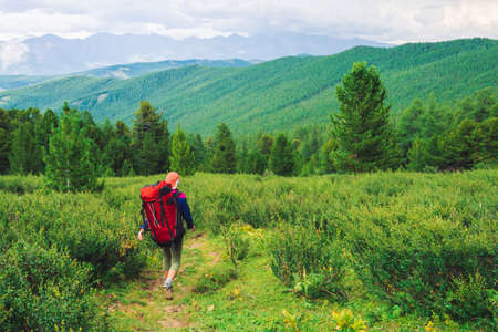 Girl with red large backpack go on footpath across green meadow to coniferous forest. Hiking in mountains. Traveler near conifer trees on summit. Mountain peaks away. Majestic nature of highlands. Standard-Bild - 124054188