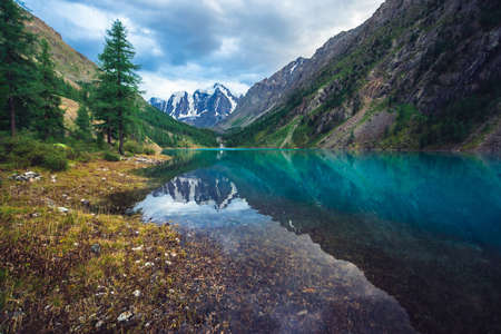 Wonderful mountain lake with view on giant glacier. Amazing huge mountains with conifer forest. Larch tree on water edge. Morning landscape of majestic nature of highlands. Cloudy mountainscape. Standard-Bild - 124054269