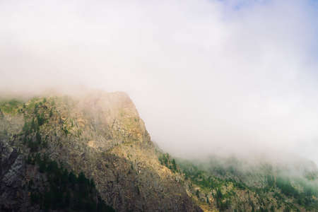 Giant rocks with trees in morning fog close up. Big cloud near mountain top. Early sun is shining through mist. Overcast weather. Atmospheric mountain landscape of majestic nature. Standard-Bild - 124054287