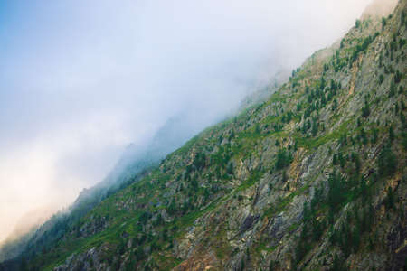 Diagonal mountainside with forest in morning fog close up. Giant mountain in haze. Early sun is shining through mist. Overcast weather above rocks. Atmospheric mountain landscape of majestic nature. Standard-Bild - 124054279