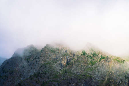 Giant rocks with trees in morning fog close up. Big cloud near mountain top. Early sun is shining through mist. Overcast weather. Atmospheric mountain landscape of majestic nature. Standard-Bild - 124054367