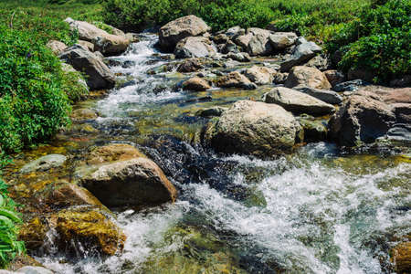 Mountain creek with big boulders near green meadow in sunny day. Clean water stream in fast brook in sunlight. Amazing landscape of Altai nature. Standard-Bild - 125153907