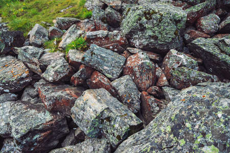 Multicolored boulder stream. Loose rock close up. Plants among randomly scattered stones. Amazing detailed background of highlands boulders with mosses and lichens. Natural texture of mountain terrain Standard-Bild - 125153919