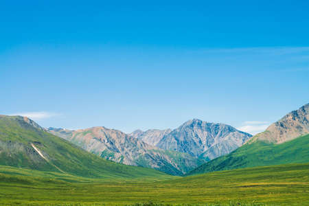 Giant mountains with snow above green valley under clear blue sky. Meadow with rich vegetation of highlands in sunlight. Amazing sunny mountain landscape of majestic nature. Standard-Bild - 126453843